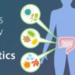The Top 4 Things to Know About Probiotics